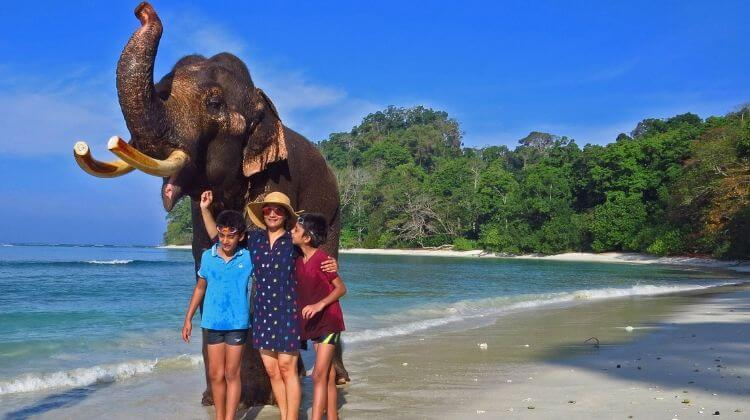 Andaman Swimming With Elephants