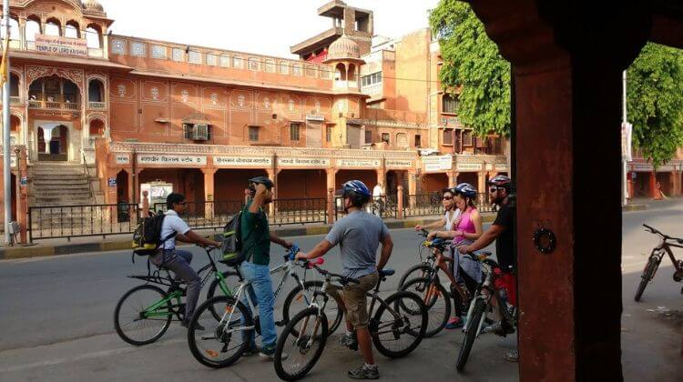 Cycling Tour With Leopard in Rajasthan Cost