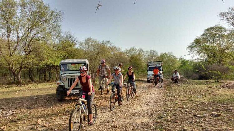 Price for Cycling Tour With Leopard in Rajasthan