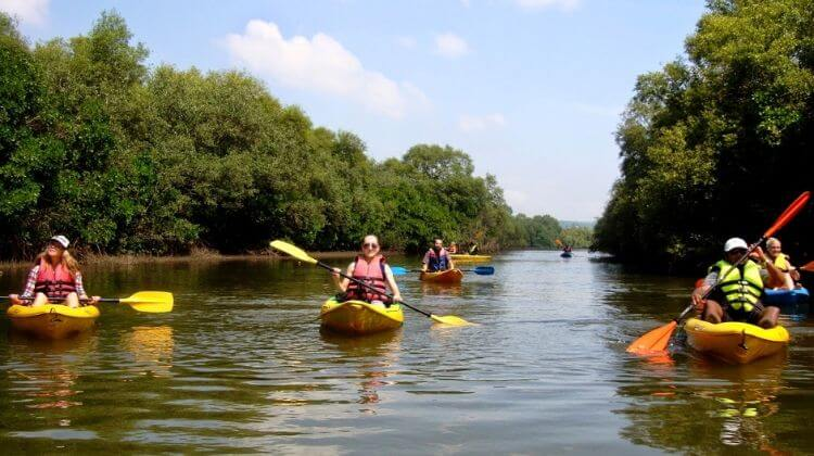 Best Time for Kayaking in Goa