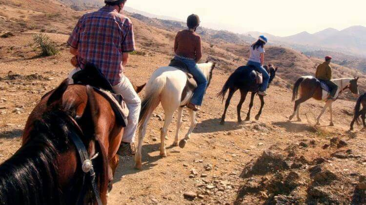 Rajasthan Tour Package with Jeep Safari & Horse Safari