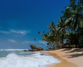 3 Nights and 4 Days Goa